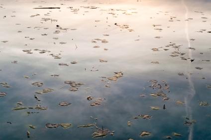 John_M_Boyd_Photography_Water-05